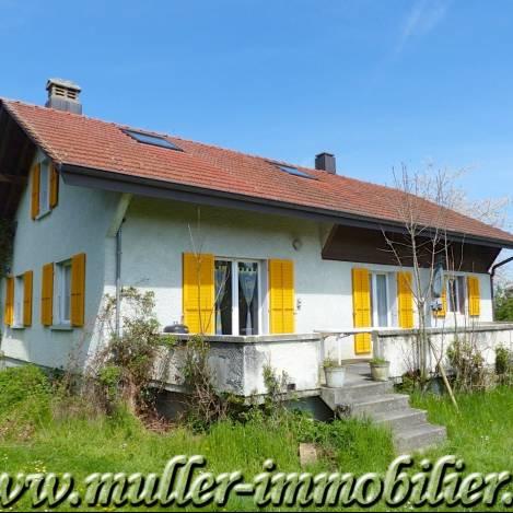 Annonces immobilier vendre en suisse maison 7 pi ces for Acheter maison jamaique